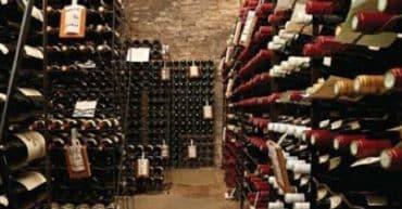 Cave à vin Dijon Licence 4