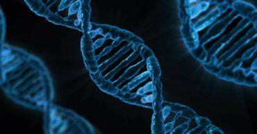 Interprétation des analyses microbiologiques